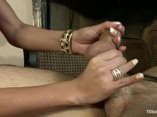 The League of Extraordinary Transsexuals The Final Punishment (2)