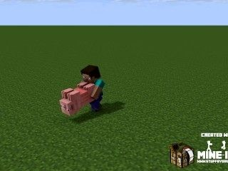 Steave Gits Sum Minecraft Pig Action.