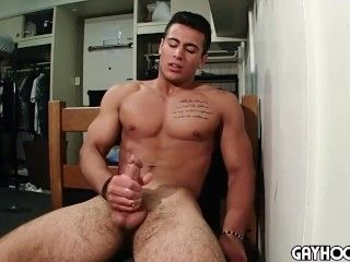 GH Taylor Shift - Handsome Muscle Solo