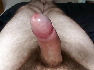 My 77 Year Old Cock