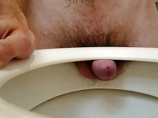 Small Cock Loser Fucking Its Toilet Seat