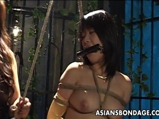 Naughty Asian Hotties Like It Nasty In Bdsm Fuck Bondage